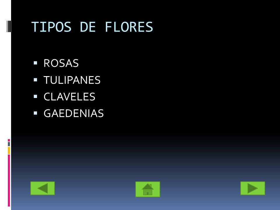 TIPOS DE FLORES ROSAS TULIPANES CLAVELES GAEDENIAS