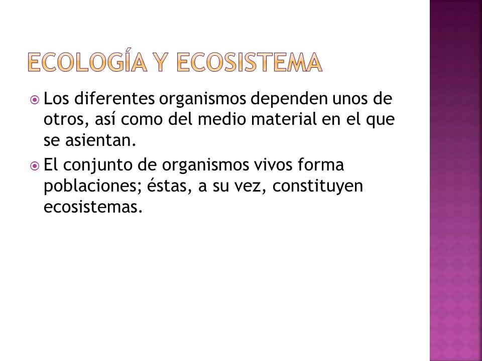 ECOLOGÍA Y ECOSISTEMA Los diferentes organismos dependen unos de otros, así como del medio material en el que se asientan.
