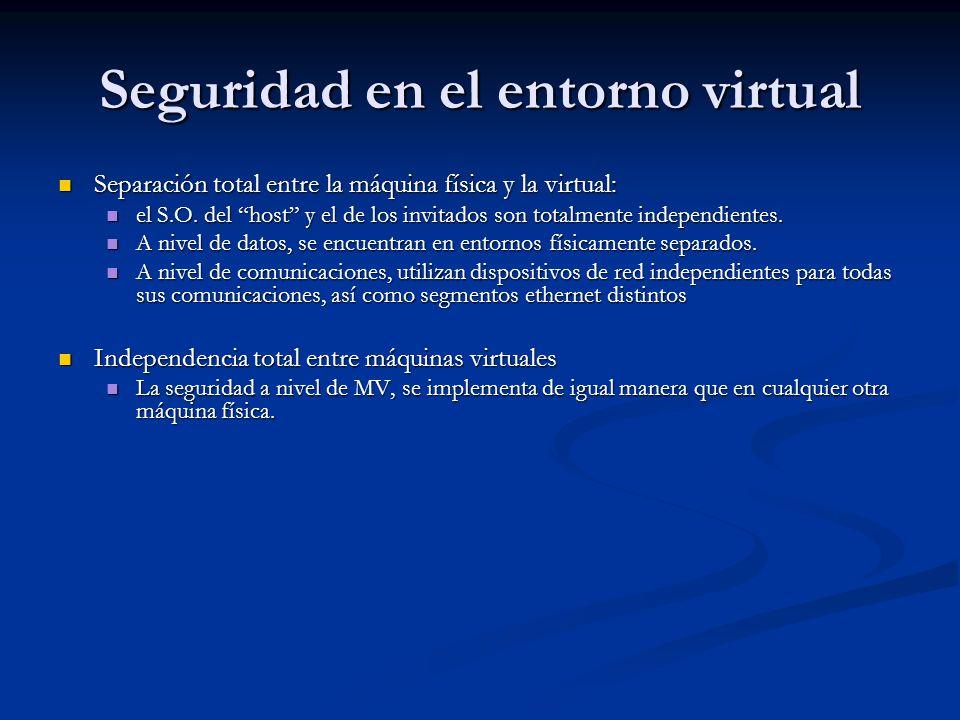 Seguridad en el entorno virtual