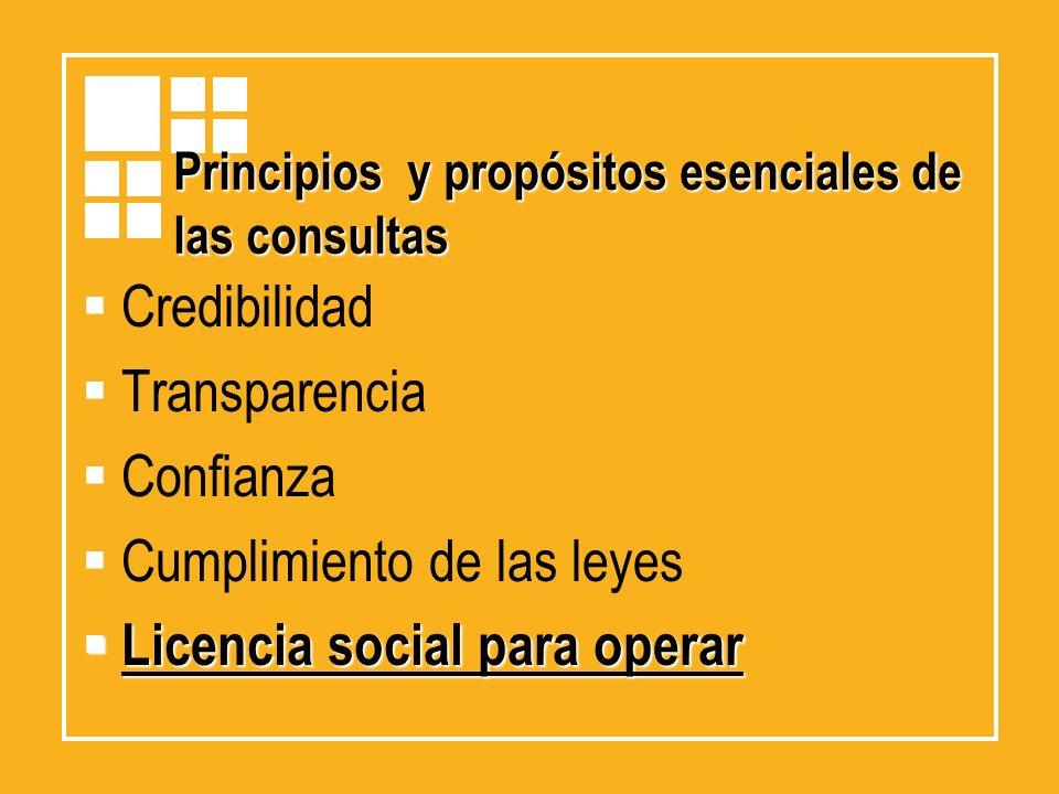 Principios y propósitos esenciales de las consultas