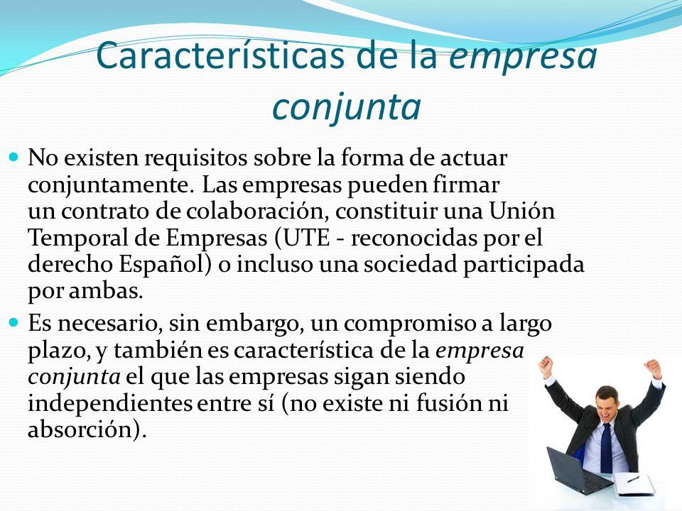 Características de la empresa conjunta