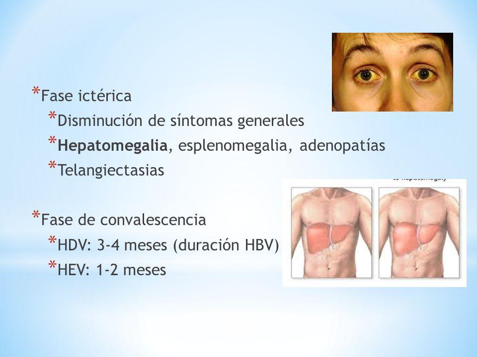 Clínica Fase ictérica Disminución de síntomas generales