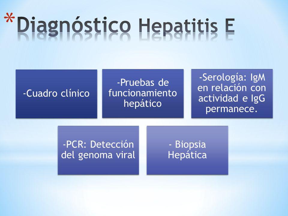 Diagnóstico Hepatitis E