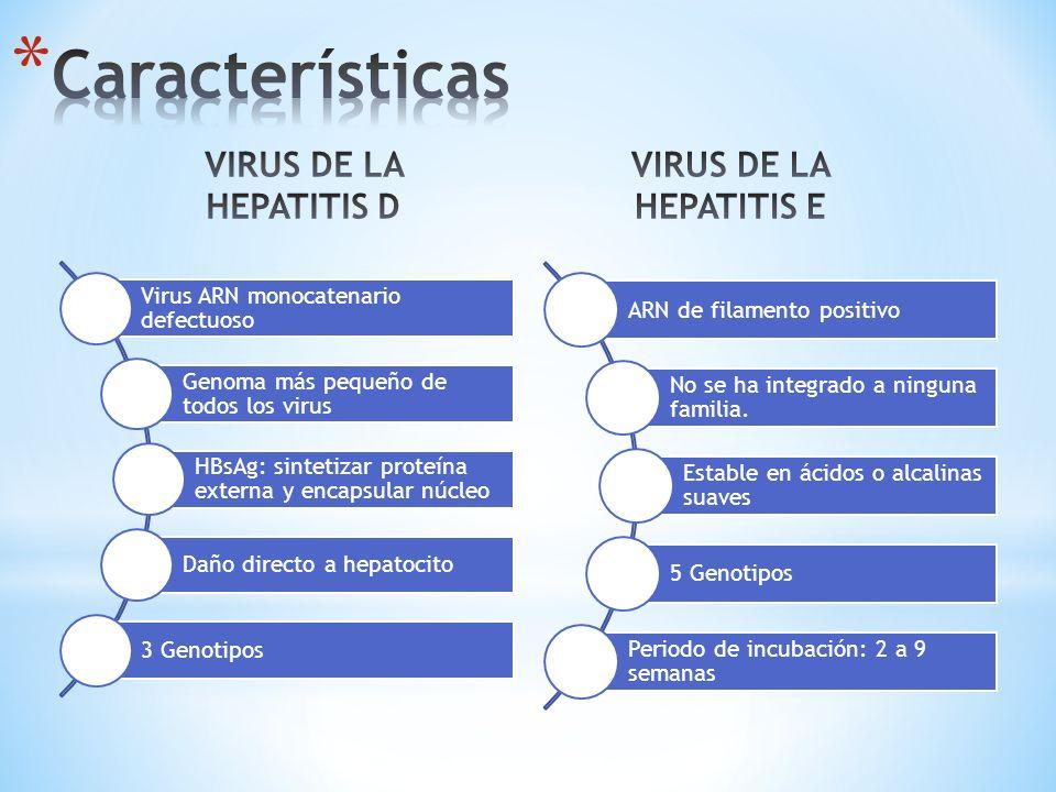 Características VIRUS DE LA HEPATITIS D VIRUS DE LA HEPATITIS E