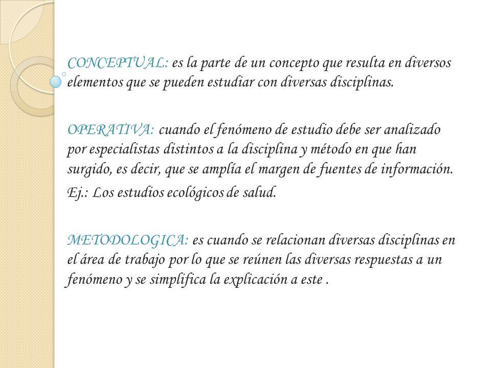 CONCEPTUAL: es la parte de un concepto que resulta en diversos elementos que se pueden estudiar con diversas disciplinas.