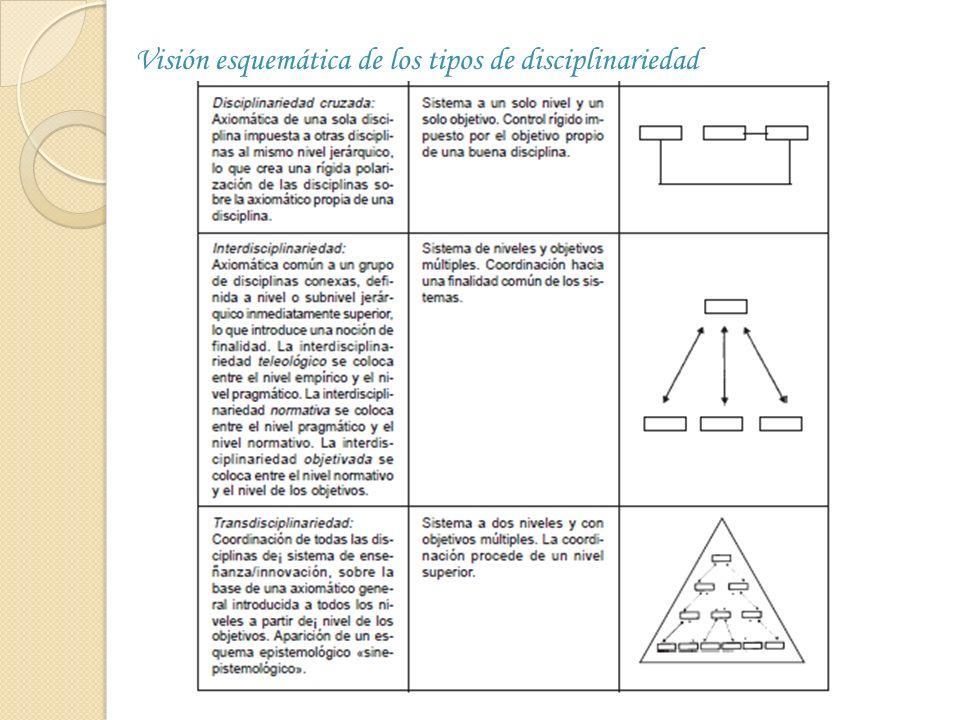 Visión esquemática de los tipos de disciplinariedad
