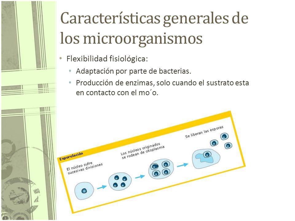 Características generales de los microorganismos