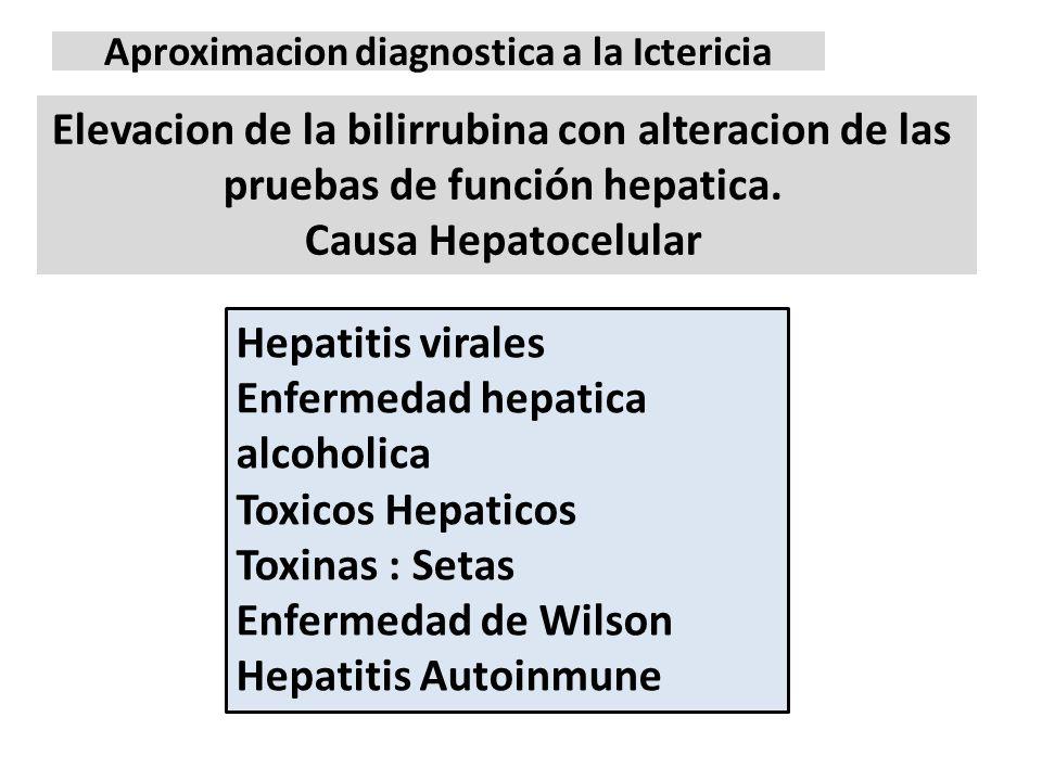 Aproximacion diagnostica a la Ictericia