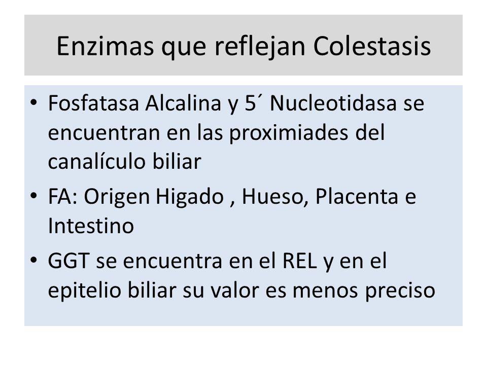Enzimas que reflejan Colestasis