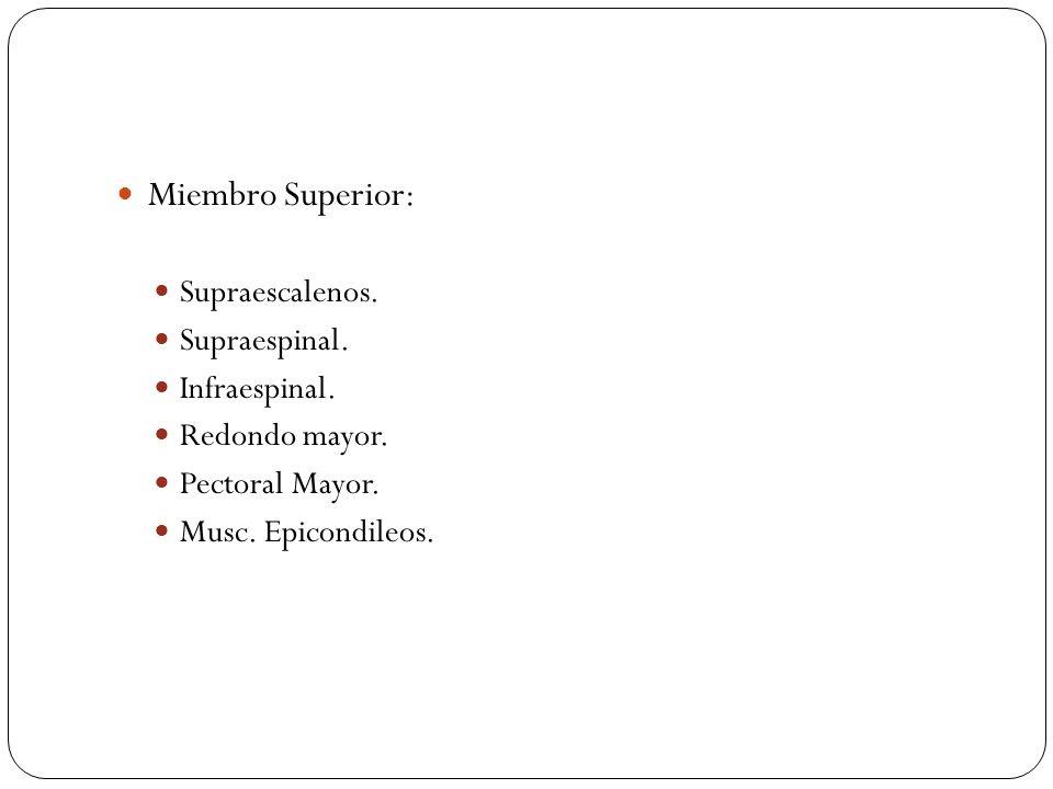 Miembro Superior: Supraescalenos. Supraespinal. Infraespinal.