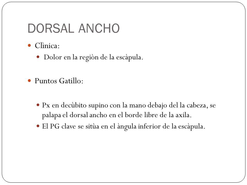 DORSAL ANCHO Clìnica: Puntos Gatillo: