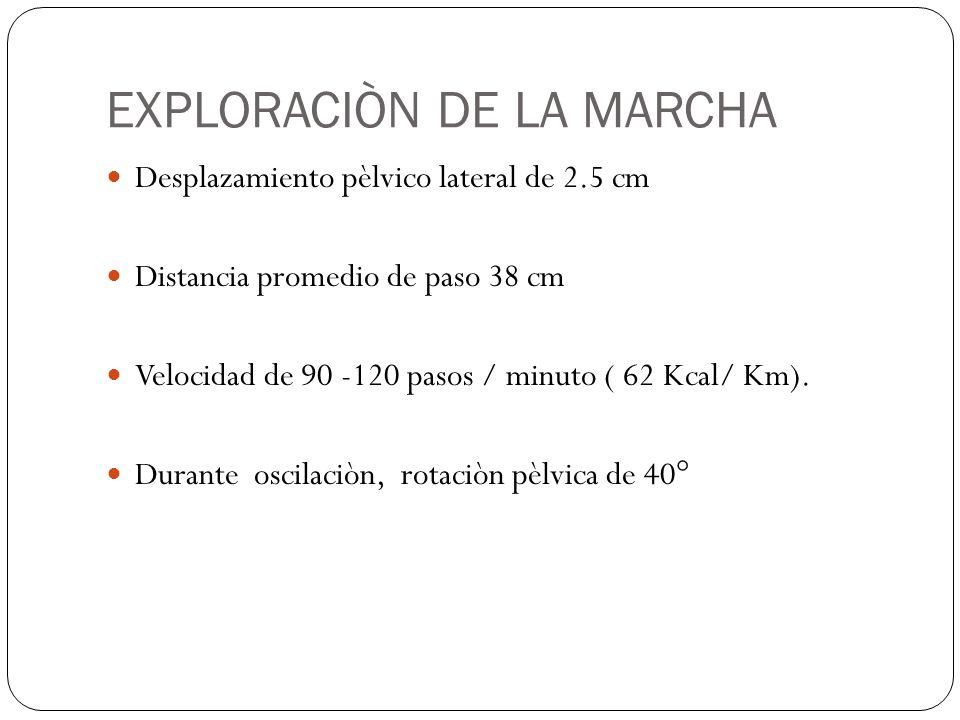 EXPLORACIÒN DE LA MARCHA