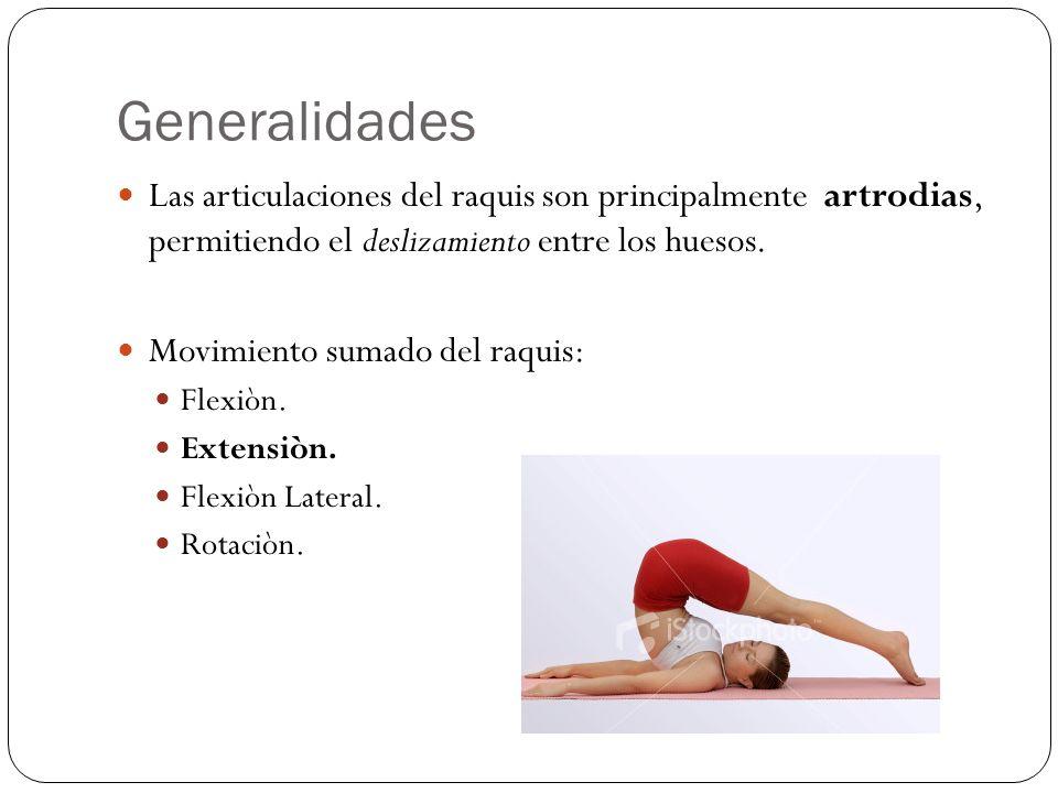 Generalidades Las articulaciones del raquis son principalmente artrodias, permitiendo el deslizamiento entre los huesos.