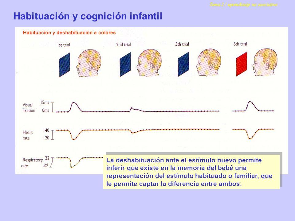 Habituación y cognición infantil
