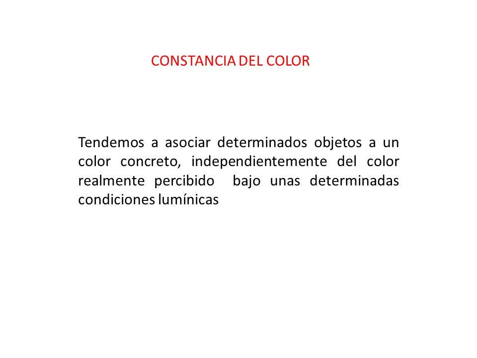 CONSTANCIA DEL COLOR