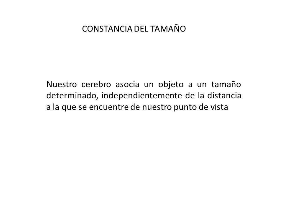 CONSTANCIA DEL TAMAÑO