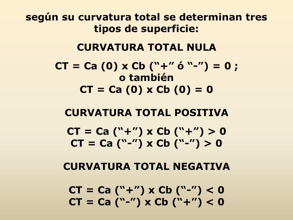según su curvatura total se determinan tres tipos de superficie: