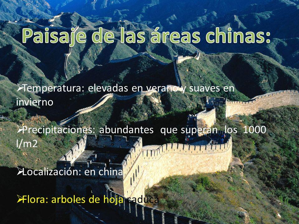 Paisaje de las áreas chinas: