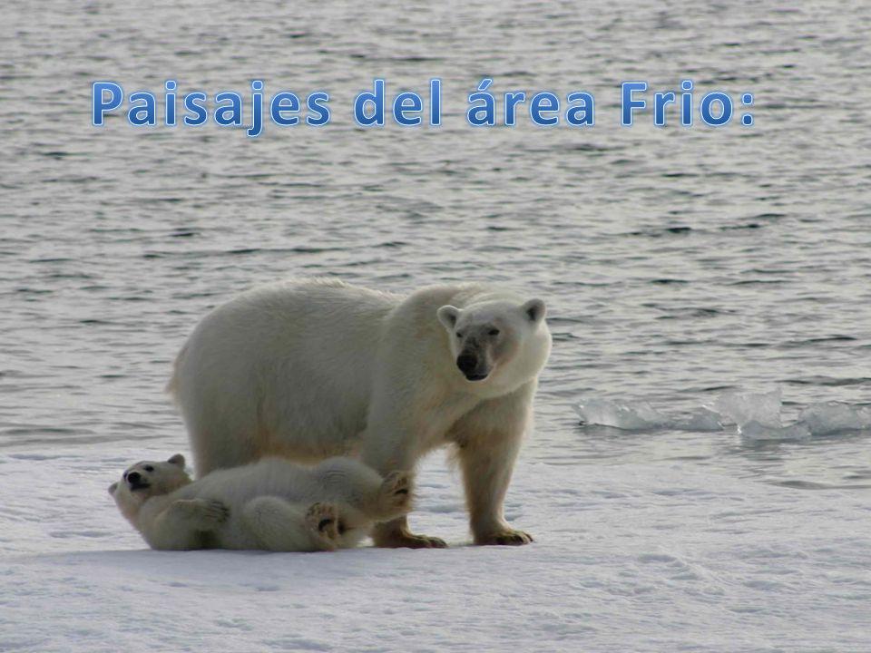 Paisajes del área Frio: