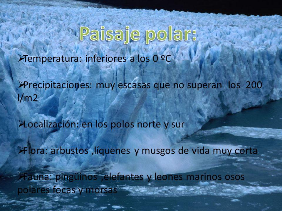 Paisaje polar: Temperatura: inferiores a los 0 ºC