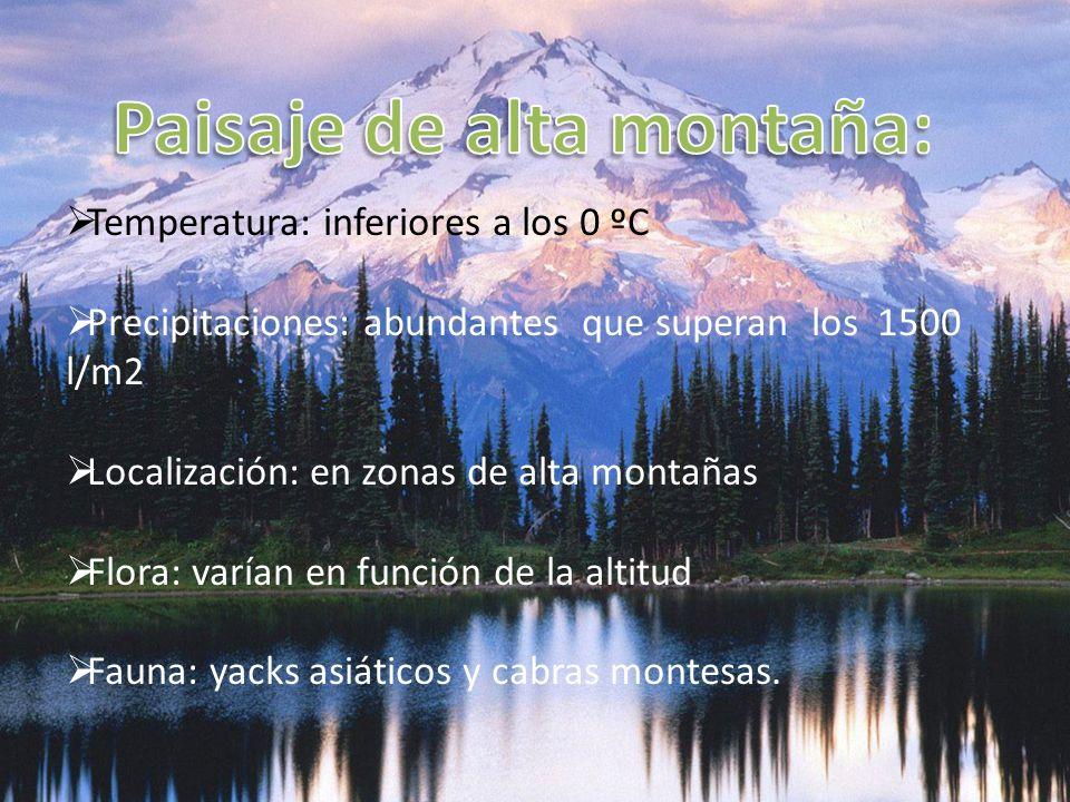 Paisaje de alta montaña: