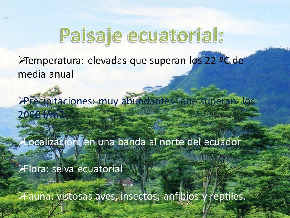 Paisaje ecuatorial: Temperatura: elevadas que superan los 22 ºC de media anual. Precipitaciones: muy abundantes que superan los 2000 l/m2.