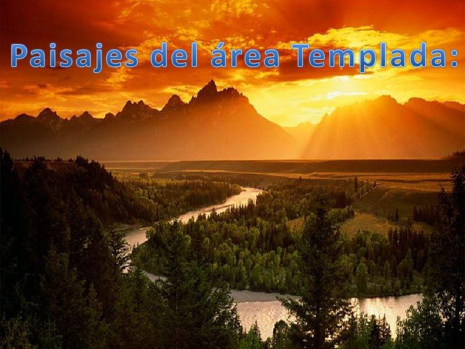 Paisajes del área Templada:
