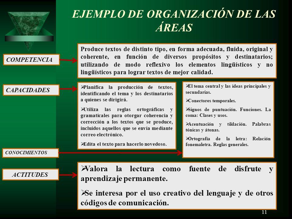 EJEMPLO DE ORGANIZACIÓN DE LAS ÁREAS