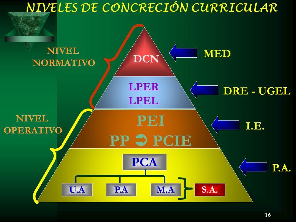 PEI PP  PCIE PCA NIVELES DE CONCRECIÓN CURRICULAR MED DCN LPER