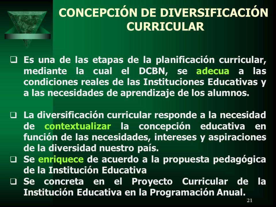 CONCEPCIÓN DE DIVERSIFICACIÓN