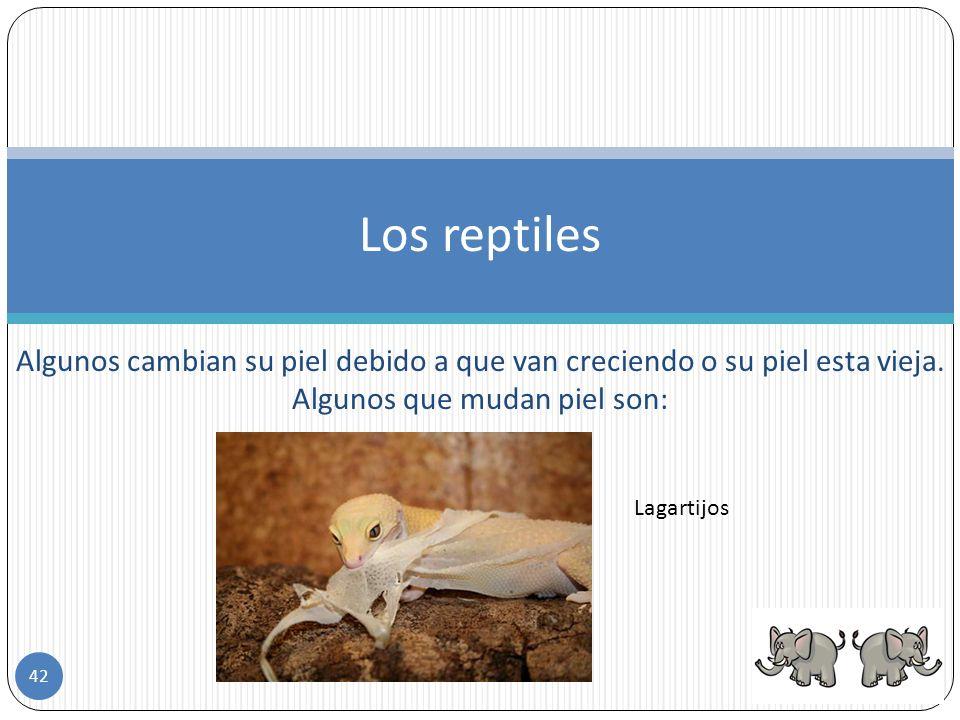 Los reptiles Algunos cambian su piel debido a que van creciendo o su piel esta vieja. Algunos que mudan piel son: