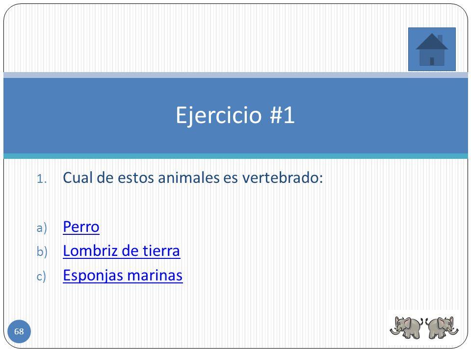 Ejercicio #1 Cual de estos animales es vertebrado: Perro