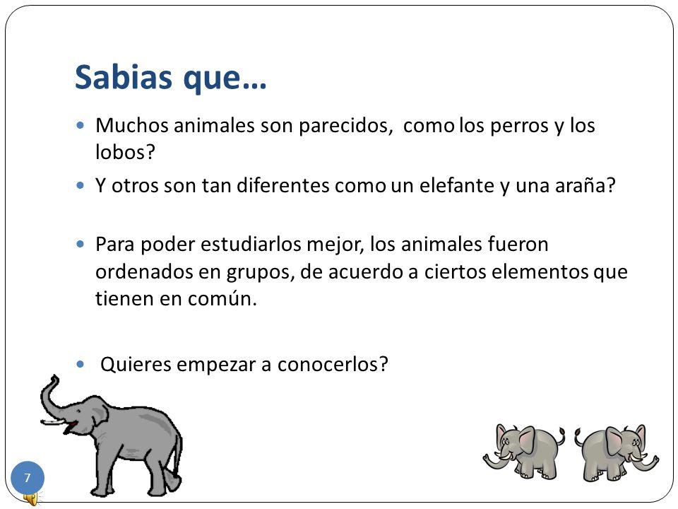 Sabias que… Muchos animales son parecidos, como los perros y los lobos Y otros son tan diferentes como un elefante y una araña