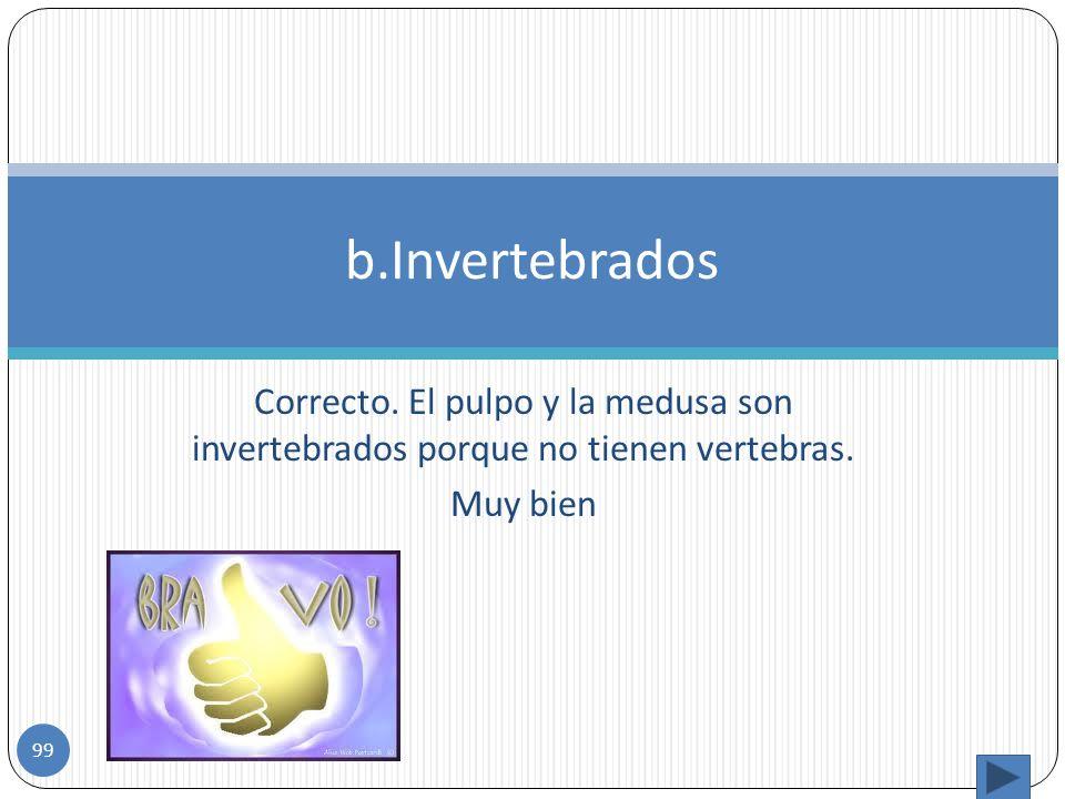 b.Invertebrados Correcto. El pulpo y la medusa son invertebrados porque no tienen vertebras.