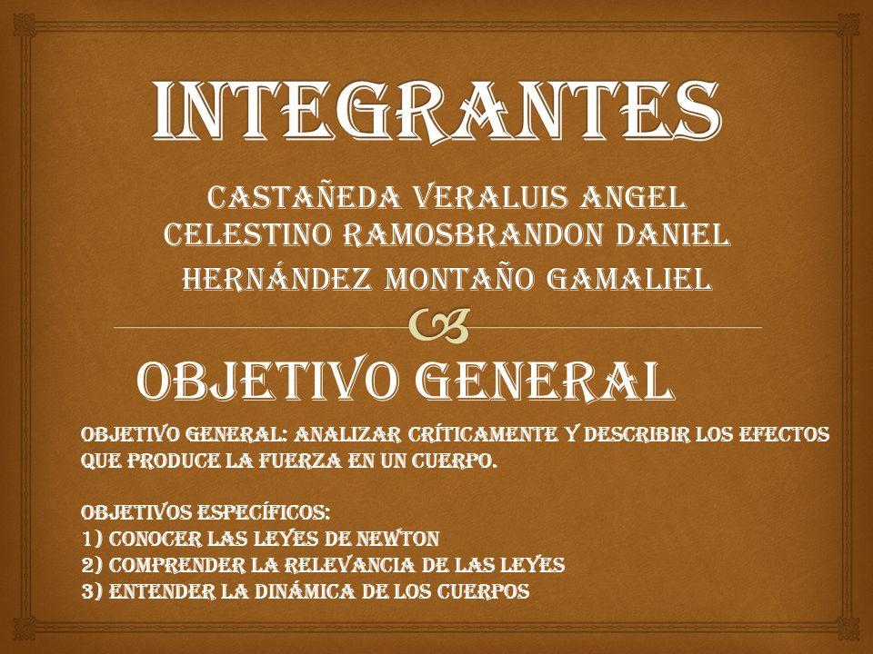 INTEGRANTES Objetivo general