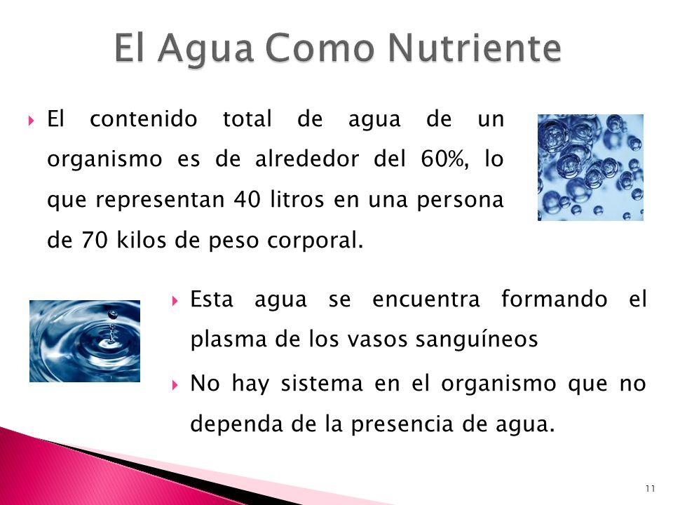 El Agua Como Nutriente