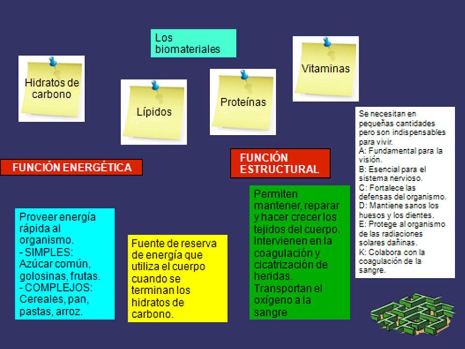 Los Biomateriales