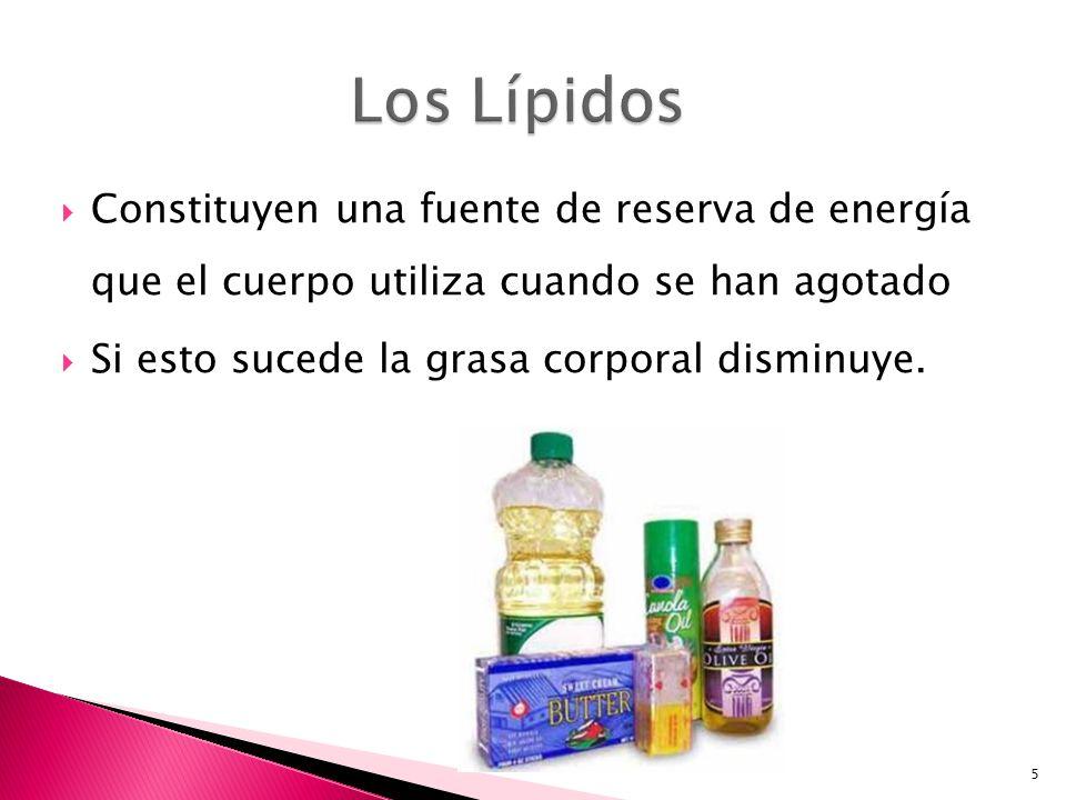 Los Lípidos Constituyen una fuente de reserva de energía que el cuerpo utiliza cuando se han agotado.