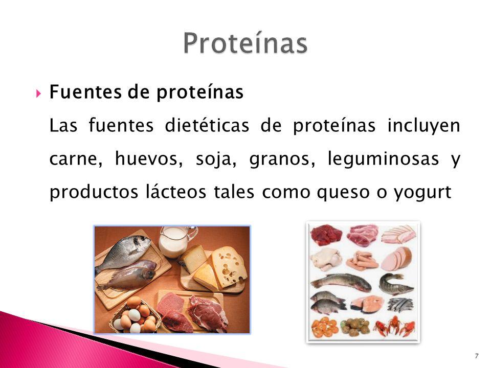 Proteínas Fuentes de proteínas