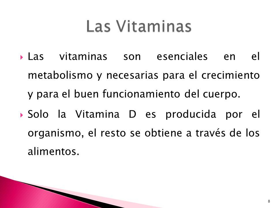 Las Vitaminas Las vitaminas son esenciales en el metabolismo y necesarias para el crecimiento y para el buen funcionamiento del cuerpo.