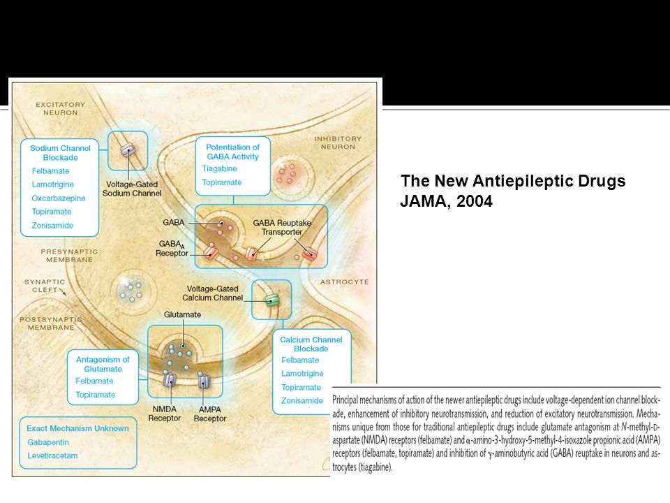 The New Antiepileptic Drugs JAMA, 2004