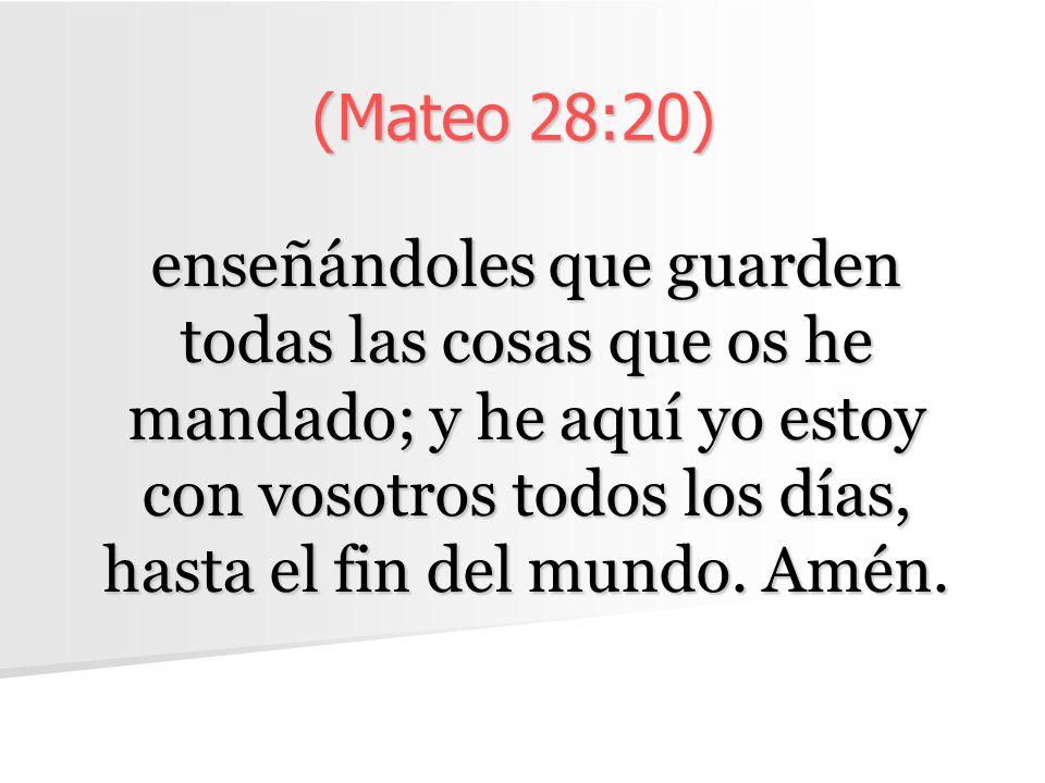 (Mateo 28:20)