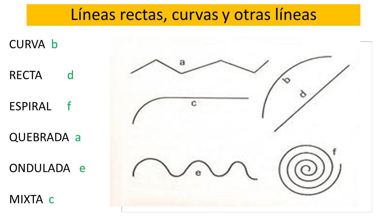 Líneas rectas, curvas y otras líneas