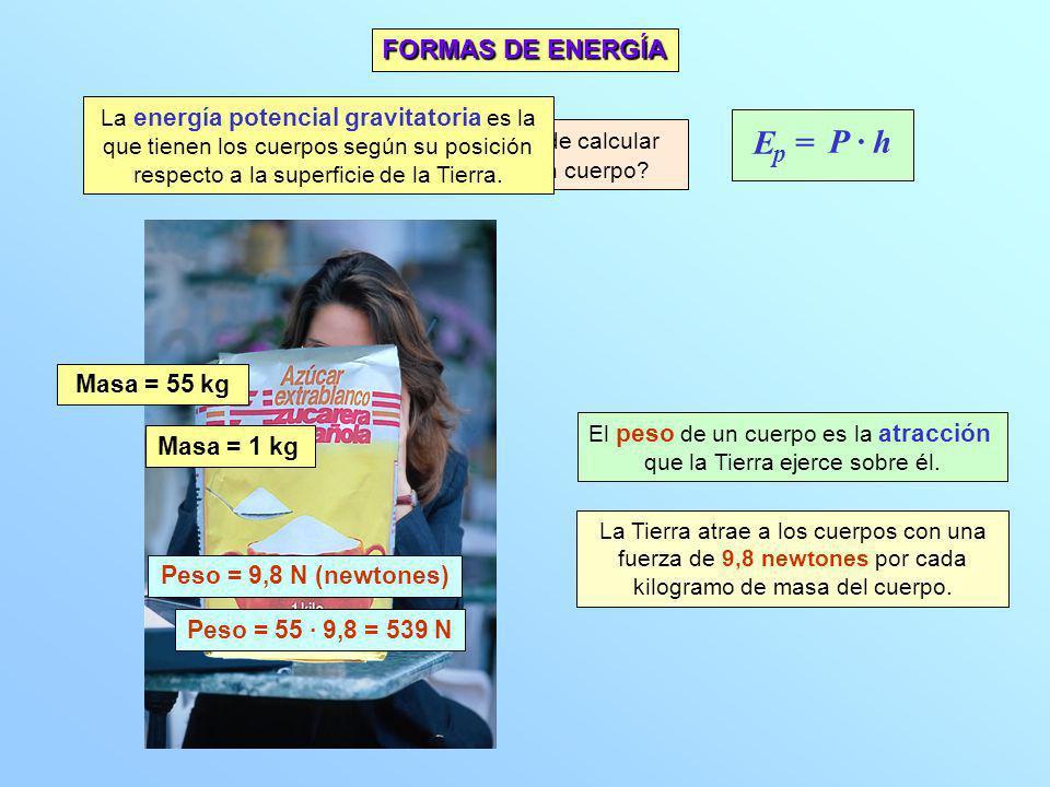 E P · h = FORMAS DE ENERGÍA p Masa = 55 kg Masa = 1 kg