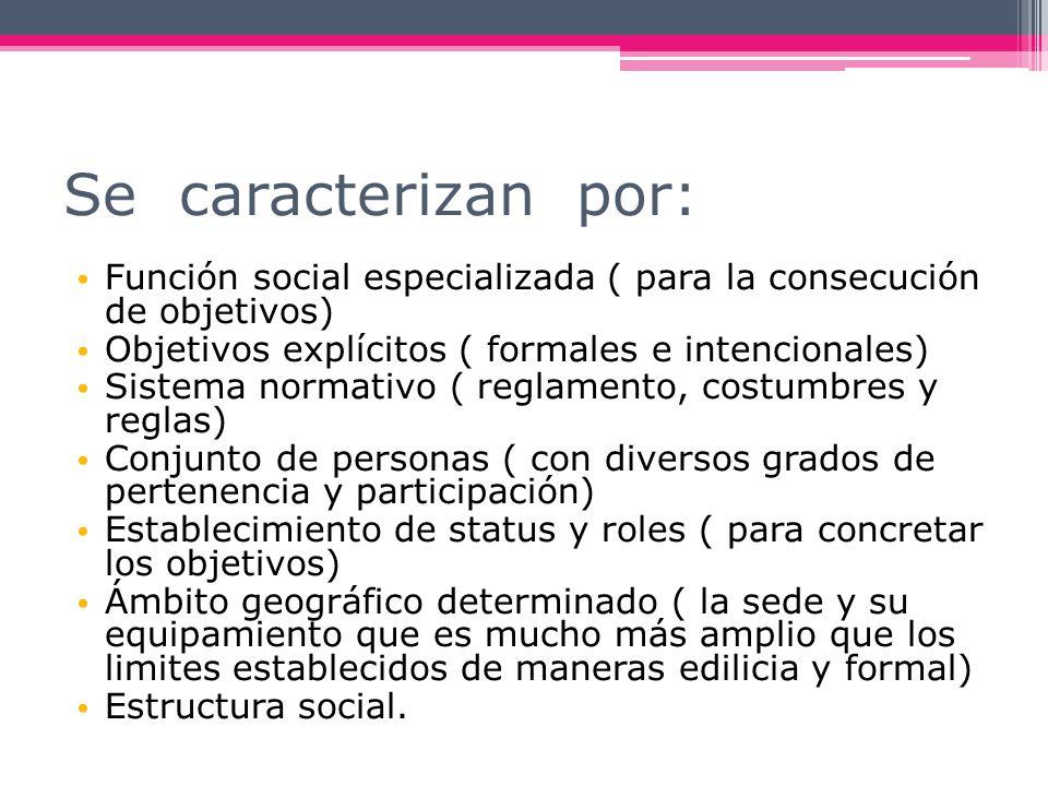 Se caracterizan por: Función social especializada ( para la consecución de objetivos) Objetivos explícitos ( formales e intencionales)