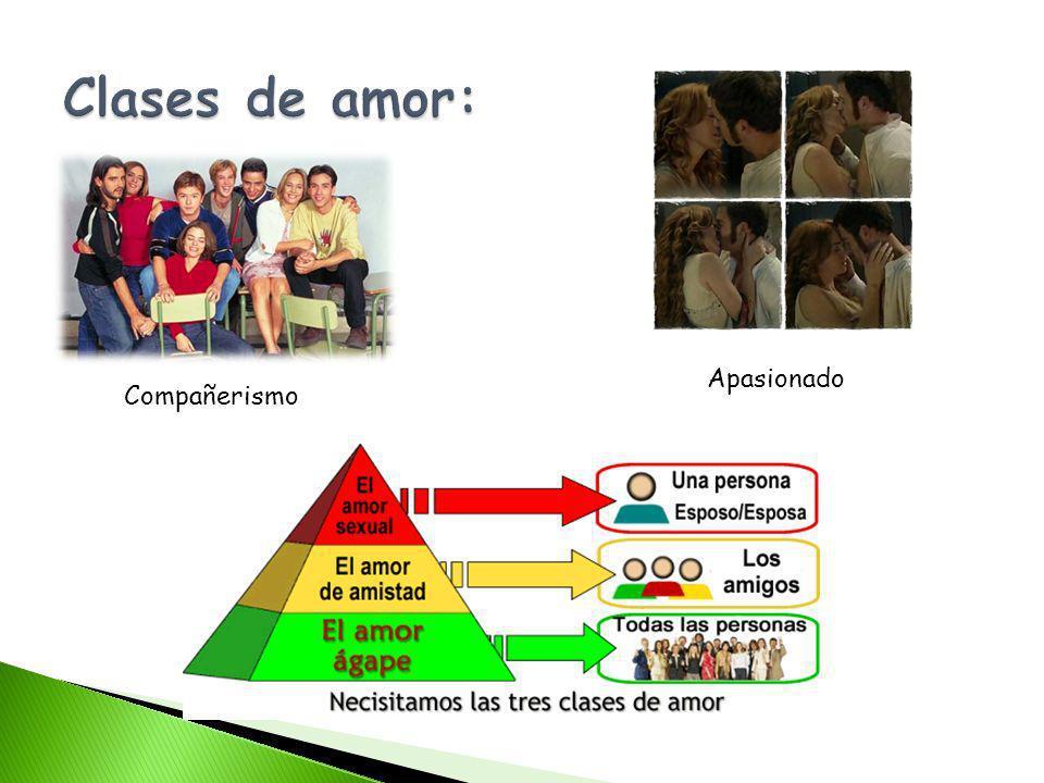 Clases de amor: Apasionado Compañerismo