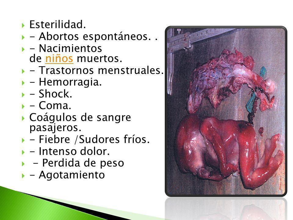 Esterilidad. - Abortos espontáneos. . - Nacimientos de niños muertos. - Trastornos menstruales. - Hemorragia.