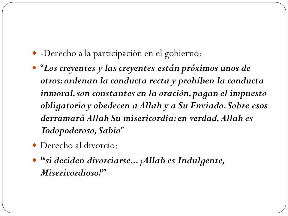 -Derecho a la participación en el gobierno: