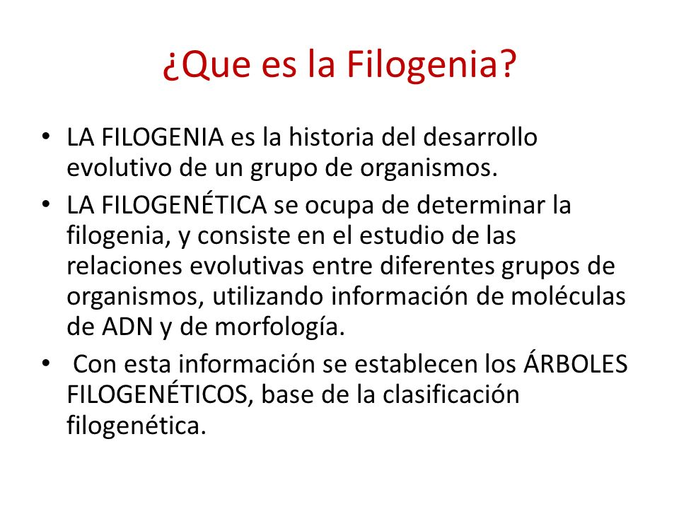 ¿Que es la Filogenia LA FILOGENIA es la historia del desarrollo evolutivo de un grupo de organismos.