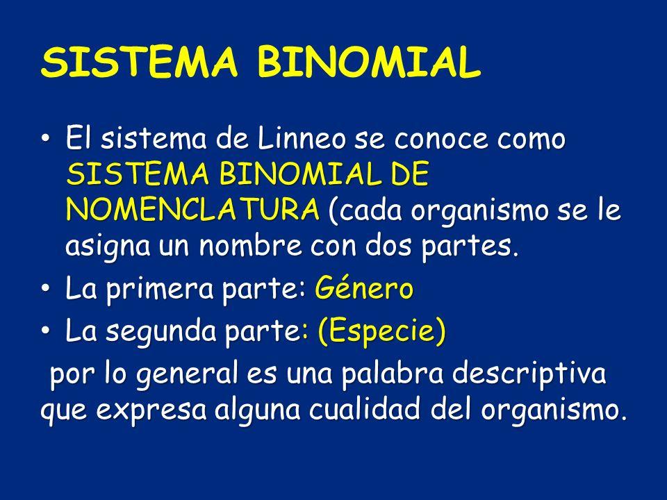 SISTEMA BINOMIAL El sistema de Linneo se conoce como SISTEMA BINOMIAL DE NOMENCLATURA (cada organismo se le asigna un nombre con dos partes.